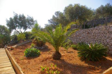 Der Garten der Finca