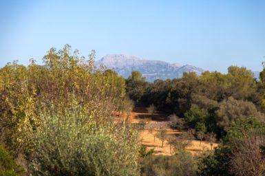 Finca Can Gall - Ausblick
