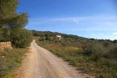 Zufahrt zur Finca Cova