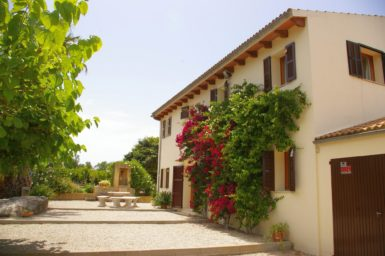Finca Sa Taulada - Boungainvillea am Haus