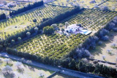 Finca Mallorca Luftaufnahme