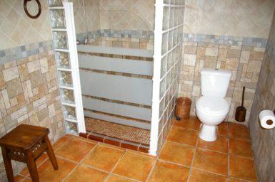 Bad mit Dusche Finca Ses Terrasses