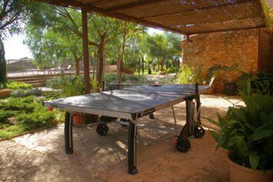 Tischtennisplatte auf der Terrasse