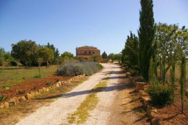 Zufahrt zur Finca Can Riera
