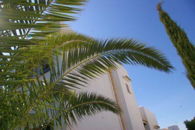 Ferienhaus mieten 6 Personen Mallorca
