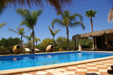 Poolbereich mit Palmengarten