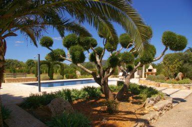 Finca Es Garrigo - schöner Garten