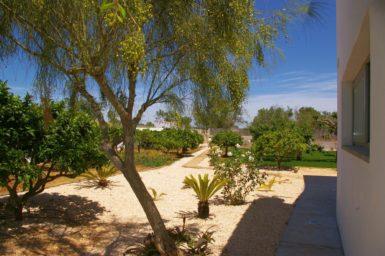 Schöner Garten Finca Marieta