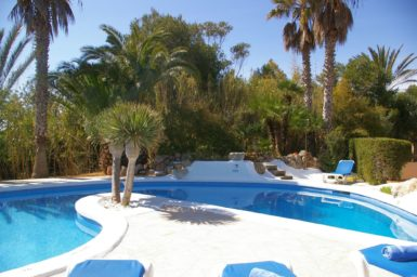 Finca Sanau - Pool im Palmengarten