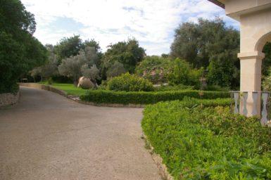 Finca Sa Pleta - der schöne Garten