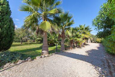 Finca Petit Oasis nahe Algaida