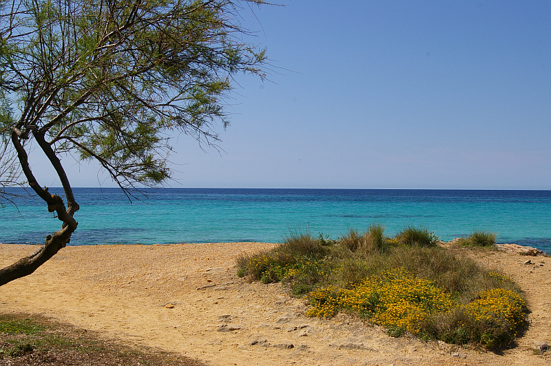 Ausblick Cala Pi - im Süden von Mallorca
