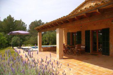 Lavendel im Garten der Finca